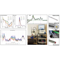 Mid-infrared Fiber Optic Solutions for Dairy Product Analysis