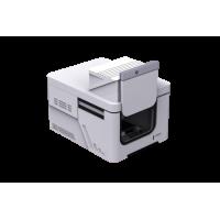 Fully Automated Focus Raman Microscope